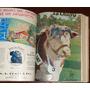 Revista La Chacra Año 1936 Completo 12 Num Encuadernados