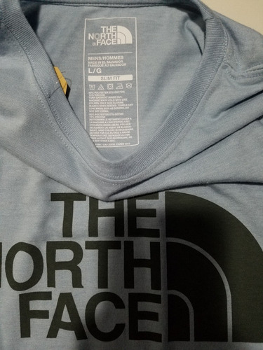 remera the north face