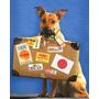 Traslados De Mascotas - Mudanzas - A Todo El Pais