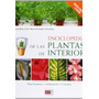 Enciclopedia De Las Plantas De Interior De Mireia Rubio Coll