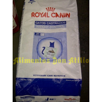 Royal Canin Young Male Reemplazado Por Weight Control X 12 K
