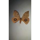 Mariposas Nocturnas,polillas
