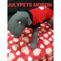 Disfraz Perro Kitty 40 Cm Caniche Salchicha Moron Julypets