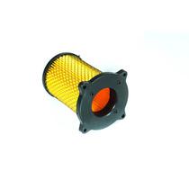 Filtro Aire / Elemento Filtrante (mod. Nuevo) Xmm 250