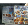 Snow Buddies Dvd Original 1ea