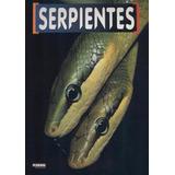 Serpientes - Formato Pdf - No Es Papel