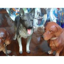 Perros De Porcelana