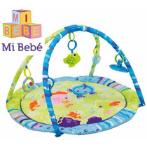 Gimnasio Bebe Manta Didactica Undersea Kiddy Tiendamibebe