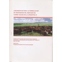 Lineamientos Formulación Mercado Carne Vacuna En Argentina