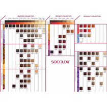 Carta De Colores Socolor.beauty