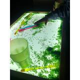 Sensory Touch Cajón Lumínico Xl Grande Sensorial Montessori