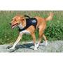 Mochila Canina Con Hidratación Noaf