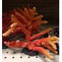 Coral Resina Importado
