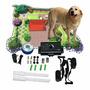 Cerco Invisible Para Perros, Collar De Entrenamiento