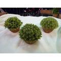 Maceta Redonda Con Pasto ( Flores Artificiales)