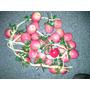 Frutas Decoracion Centro De Mesa Riestra X 12 Manzanas Rojas