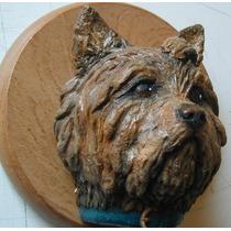 Esculturas Cabezas Razas De Perros