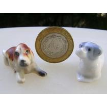 Par De Perros Perritos Miniatura En Porcelana - No Envío