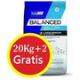 Vital Can Balanced Adulto Large + 2 Kg Gratis