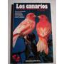 Los Canarios - Al David