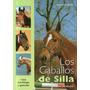 Los Caballos De Silla - Domenico Mario