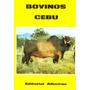 Bovinos Cebu - Hector Tocagni