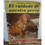 El Cuidado De Nuestro Perro Higiene Alimentacion Educacion