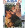 Labrador Retriever ? Diane Mccarty En Ingles Tapa Dura Aa5