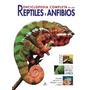 Enciclopedia Completa De Los Anfibios Y Reptiles- Nuevo!!