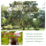 Las Boticarias Aceite Esencial Puro De Tea Tree X 15 Ml