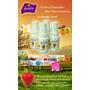 Aceite Esencial Extraconcentrada Perfumes - Venta Mayorista