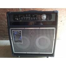 Amplificador Swr Bajo Workingpro 2x10c 260w Mex Musicapilar