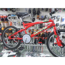 Bicicleta Freestyle Fire Bird Rodado 20 48 Rayos