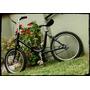 Bicicleta Plegable Antigua Tipo Multiuso Rodado 16