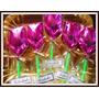 Rosas Y Mini Rosas De Chocolate Mejor Precio Souvenir