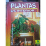 Plantas De Interior. Haager. Ed. Susaeta. Jardinería