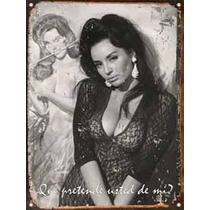 Cartel Chapa Vintage Publicidad Antiguas Coca Sarli L026