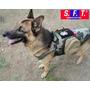Chaleco Tactico K9 Camo De Semper Fi Tactical®.