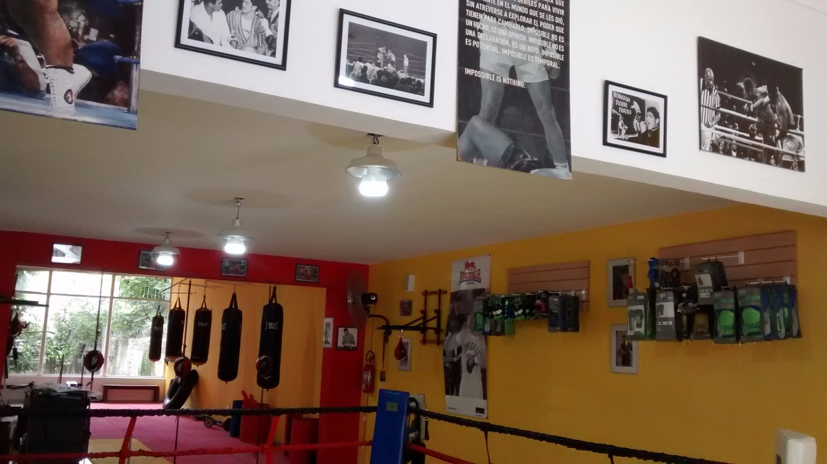 Clases de boxeo entrenamiento gimnasio de boxeo for Gimnasio de boxeo