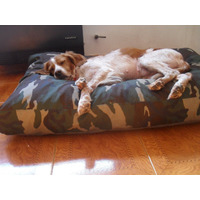 Colchon Puff Mascotas Cama Perros Gatos 70 X 50 Retira Ya!!