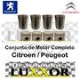 Conjunto De Motor Completo Original Citroen / Peugeot