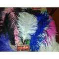 Plumas Artisticas-cotillon-carnaval-35-55cm