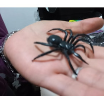 Arañas Plasticas X 12 Souvenir Decoracion Halloween Terror
