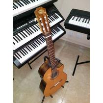 Guitarra Criolla Con Corte Y Eq C/afinador Nogal Breyer