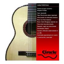 Gracia Guitarra H De Gran Concierto Premium Daiam