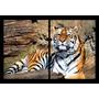 Tigre Alimales Felinos 2 Partes Cm En Tela Canvas .exelente!