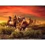 Caballos Impreso En Tela Canvas De 60x80 Cm - Exelente