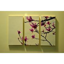 Cuadros Tripticos Dipticos Decorativos Fotografia Artistica