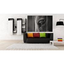 Caballo Triptico En Canvas De 140x90 Cm Exelente Calidad