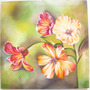 Cuadro Flores Sobre Bastidor Decoración Amapolas Lilium